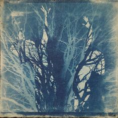Original artwork - This piece is a cyanotype monoprint finished with watercolor, oil pigment and cold wax, mounted on cradled birch board and ready to hang. The image is an original artwork that is part of the Mother series. Multimedia Artist, Cyanotype, Birch, Original Artwork, Wax, Cold, Watercolor, The Originals, Image