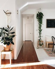 / bright and clean / simple entryway with plants