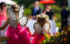 Toowoomba Photographer specialising in wedding Wedding Commercial Industrial Product Corporate Headshots Corporate Headshots, Fairy Wings, Commercial Photography, Flower Girls, Studios, Salt, Wedding Photography, Flowers, Bohemian Flower Girls