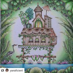 Johanna Basford - Magical Jungle - Inspiration