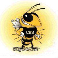 Fulton high school hornet bryant high school hornets for T shirt printing mansfield tx