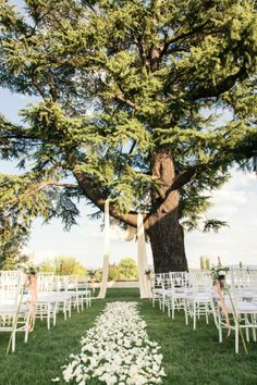 Wedding Ceremony under the trees Indoor Ceremony, Wedding Ceremony, Rose Petals Wedding, Aisle Style, Wedding Memorial, Love And Marriage, Decoration, Wedding Inspiration, Wedding Ideas