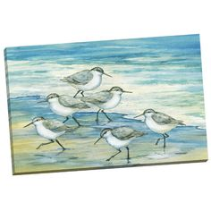 Found it at Wayfair - Surfside Sandpiper by Paul Brent Painting Print on Wrapped Canvas