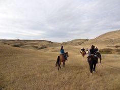 La Reata Ranch, #Saskatchewan - Blog post by the Bald Hiker aka Paul Steele…