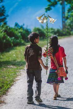 Sprouting love, Vietnam