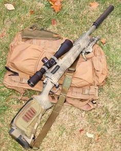 Suppressed Remington 700 308
