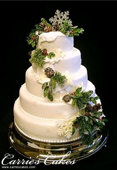 Google Image Result for http://www.carriescakes.com/images/cakes/422-resized_winter.jpg