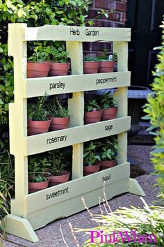 Repurposed pallet as herb garden.