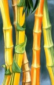 Bamboo by Diana Cosford Bamboo Art, Indonesian Art, Hawaiian Art, Indian Art Paintings, Tropical Art, Calligraphy Art, Pictures To Draw, Fabric Painting, Japanese Art