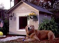 do-it-yourself dog house plans bird house plans and other outdoor plans Cool Dog Houses, Bird Houses Diy, Bird House Plans, Backyard Projects, Backyard Ideas, Garden Ideas, Free Dogs, Shelter Dogs, Shelters
