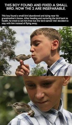 Faith In Humanity Restored – 23 Pics. I usually hate birds but that second picture just hit me right in the feels!<<< I clearly don't hate birds Sweet Stories, Cute Stories, Happy Stories, Happy Together, Beautiful Creatures, Animals Beautiful, Funny Animals, Cute Animals, Amor Animal