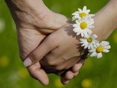 Ah o amor. Daisy Love, Daisy Girl, Color Splash, Color Pop, Ah O Amor, Daisy Party, Daisy Bracelet, Daisy Chain, Daisies