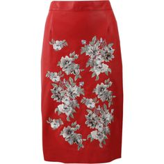 Alexander Mcqueen Floral Embroidered Leather Skirt ($3,795) ❤ liked on Polyvore featuring skirts, leather skirt, red skirts, alexander mcqueen skirt, knee length pencil skirt and real leather pencil skirt