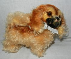 Vintage Steiff Pekingese Mohair Dog with Raised Script Button from reddoorantiques on Ruby Lane/ just didn't know where to pin him