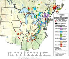 white-nose syndrome map