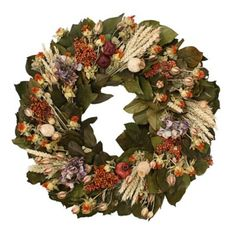 Olive Branch Wreath in Gardening PLANTS Wreaths at Terrain