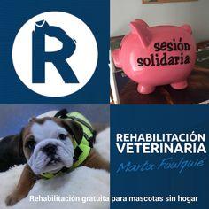 Sesión solidaria: rehabilitacion gratuita para animales sin hogar https://es.ulule.com/rehabilitacion-veterinaria-gratuita/ Colabora y difunde. Ayúdame a ayudar