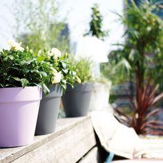 Plastique Rond Grecian Plante De Jardin Patio Pot Planteur Bowl 42 cm
