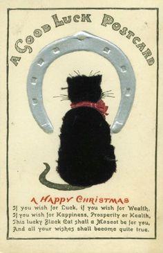Novelty Velvet Black Cat Postcard