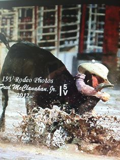 Chisum Docheff steer wrestling in the mud at Steamboat, Colorado.