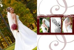 """APM - Album Examples  Our goal at A Photographic Memory (www.apmnh.com) is to cater to the wants & needs of our clients. All packages are customized for each client's budget. If you would like to schedule apt, please call the office at 1-888-436-8648. Find Us on FB: Friend """"Dave Soucy APM"""" or Like Page """"A Photographic Memory"""". Twitter: @Dave Bird Apm Blog: apmnh.wordpress.com"""