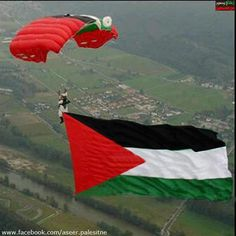 Palestine we feel for you