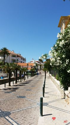 Welcome to Cascais, a surprising place with lots of glamour and natural surroundings. Amazing Hotels, Best Hotels, Beaches Nearby, Portugal, Blue Flag, Sidewalks, Fishing Villages, Nice To Meet, Pedestrian