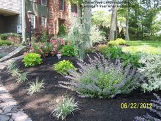 Front of Home planting beds with perennials and shrubs MA Front Yard Landscaping, Landscaping Ideas, Backyard Ideas, Garden Ideas, No Grass Yard, Planting, Gardening, Best Perennials, Landscape Designs