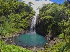 When youre hiking in the very humid mountains of Tahiti in frenchpolynesia and you come across this swimminghole throwback waterfallwednesdayIts a wet weekend in the PNW this weekend but nevertheless were going camping yay