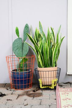 A fun way to spruce up potted plants