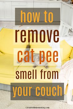 How exactly to reset your house & begin a cleaning routine. Having a tidy house saves my sanity as a stay at home mom. Listed here are my tips to reset your home back to square one and begin a cleaningschedule to help keep it that way. Remove Cat Urine Smell, Cat Pee Smell, Cat Urine Smells, Remove Stains, House Cleaning Tips, Diy Cleaning Products, Cleaning Hacks, Household Products, Cat Products