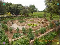 Buy Flowers Online Same Day Delivery Potager Surlev De Pierre - This Potager Looks To Have Been Constructed Inside An Old Swimming Pool. Potager Garden, Veg Garden, Vegetable Garden Design, Edible Garden, Garden Beds, Vegetable Garden For Beginners, Raised Vegetable Gardens, Backyard, Patio