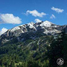 Erster Schneefall in der Nähe von Obertauern - - - - - - - - - - - - - - - Serie:  Schönheit am Wegrand  Beauty along the way - - - - - - - - - - - - - - -  . . . . . . . . . . . . . .  #nature  #strobl #salzburg #art #artist #splashesofcolor #malerischelichtblicke  #wolfgangsee #wasser #blumen #schoenheit #schönheit #schönheitamwegrand #beauty #beautybythewayside #beautyalongtheway