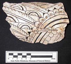 Shell cup fragment, ca. 1250-1450 AD, Spiro Mounds, incised, with Southern Cult iconography.
