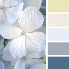 shades of colors for the wedding, palette for summer,Light, airy palette as flying cherry petals, plucked in the spring breeze. This slim, elegant range has a special charm, a pleasant, barely perceptible aftertaste. Pastel, soft colors of yellow, pink and milk are ideal to create an atmosphere of complete relaxation. More pronounced gray shades serve as a harmonious complement.