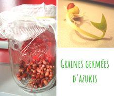 #naturopathie #nutrition #grainesgermees / Non, vous n'êtes pas obligé d'acheter un germoir pour faire germer de belles graines ! Oui, les graines germées sont bonnes pour la santé et apportent vraiment des bienfaits ! Oui, on peut faire germer des céréales et des légumineuses ! Et oui, bien sûr, je vous explique tout dans cet article ! Haricot Azuki, La Germination, Oui, Nutrition, Eat Fruit, Vitamin E, Rocket Salad