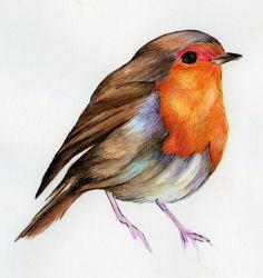 Flying Robin by Ann Hughes, via Behance