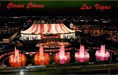 Las Vegas NV Circus Circus Hotel Casino Night View