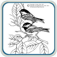 This Lora S. Irish pattern package contains highly detailed designs featuring your favorite backyard birds, ...Quail, Cardinal, Blue Jay, Robin, Nut Hatch