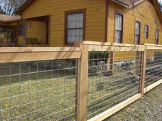 hog panel gate hog panel fencing on back deck and for loft railing possibly? Hog Panel Fencing, Wire Fence Panels, Cattle Panel Fence, Hog Wire Fence, Welded Wire Fence, Cattle Panels, Farm Fence, Dog Fence, Backyard Fences