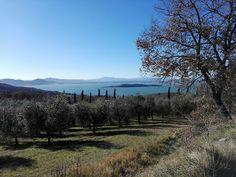 Från Underbara Umbrien: Bildextra från Trasimeno sjön