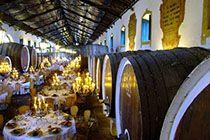 Adega Regional de Colares - Wedding Venue | Wine Cellar | Sintra | Destination Wedding | Portugal | Table Setting | Table Centerpieces | Table Decoration
