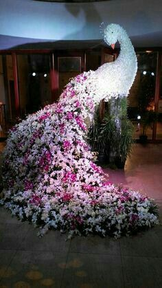 6 Brilliant Ideas for a Peacock Theme for your Sangeet or Wedding Art Floral, Deco Floral, Floral Design, Amazing Flowers, Fresh Flowers, Beautiful Flowers, Peacock Decor, Peacock Theme, Ikebana