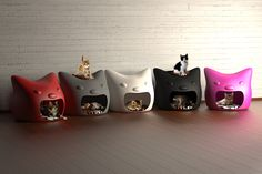 Kitty Meow cat house collection.