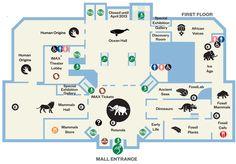 Smithsonian Museum of Natural History floor plan