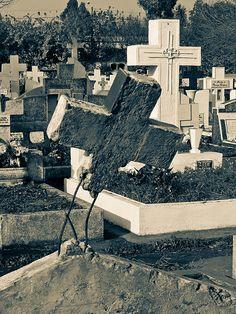 The Forgotten.  By REG.