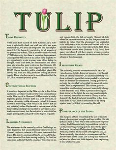 TULIP - this acronym for key features of Calvinism is probably misnamed. Calvin probably held strictly to maybe 2 of the Quick View Bible, Bible Heroes, 5 Solas, Christian Apologetics, Spiritual Prayers, Reformed Theology, Christian Memes, Verses, Scriptures