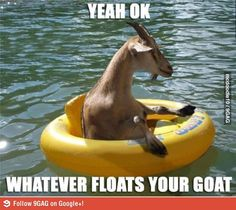 Yeah, ok, whatever floats your goat
