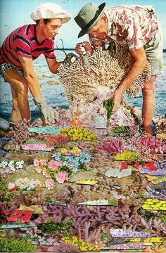 Psychedelic Collages Bring New Meaning To Vintage Photographs Art Du Collage, Surreal Collage, Surreal Art, Flower Collage, Collage Design, Arte Coral, Coral Art, Collages, Graffiti Art