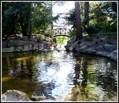 La cascade du jardin du Thabor de Rennes - 3 -